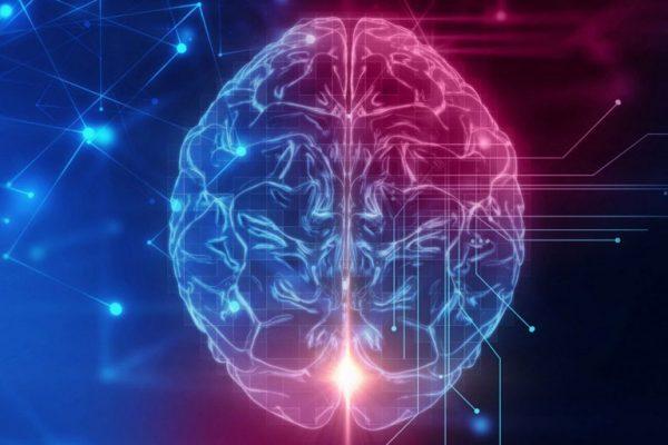 مرکز نوعدوستی در مغز کشف شد